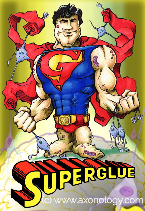 Superglue glia